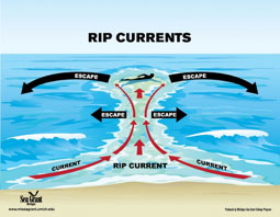 safety in rip currents